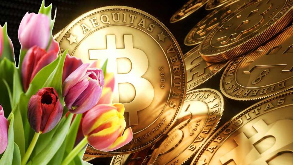 Bitcoin and tulip bulbs